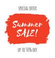 summer sale lettering inscription vector image