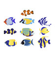 exotic fish set animal flat vector image vector image