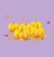 five orange pumpkins vector image vector image