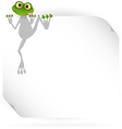 Frog and white background vector image vector image