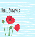 hello summer text with cute colorful red field vector image vector image