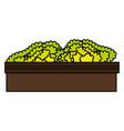 park bush isolated icon vector image vector image