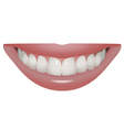 perfect smile vector image vector image