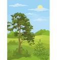 Summer landscape with trees and blue sky vector image vector image