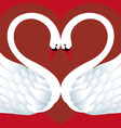 Two Swans in Love vector image vector image