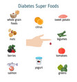 diabetes foods infographics diabetes foods vector image