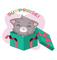 funny sticker with cute gray cat - surprise party vector image vector image