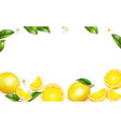 lemon realistic background vector image vector image