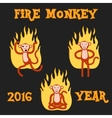 New Year Monkey in the fire vector image vector image