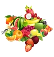 Arrow composed of different fruits with leaves vector image vector image