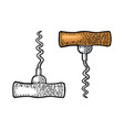 corkscrew black and color vintage engraving vector image vector image