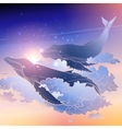 Graphic whales flying in the sky vector image vector image