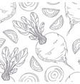 hand drawn seamless pattern with beetroot vector image vector image