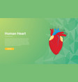 human heart template wallpaper background design vector image vector image
