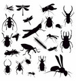 insect silhouette vector image vector image