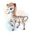little zebra in watercolor style vector image