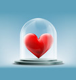 red heart inside a glass dome vector image vector image