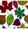 Seamless pattern with colorful leaves vector image vector image