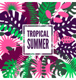 summer hawaiian tropical poster vector image vector image