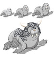 the set of stages of growing up walrus in the gray vector image
