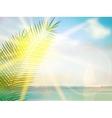 Vintage palm background design template vector image