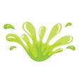 a green color splash vector image vector image