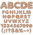 alphabet letters numbers signs gingerbread vector image