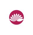 beauty flowers logo vector image vector image