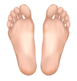 Healthy feet vector image vector image