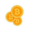 investments bitcoin and block chain vector image vector image