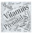 prenatal vitamins Word Cloud Concept vector image vector image