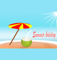 summer holiday island beach with coconut water vector image