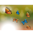 A special paper with orange and blue butterflies vector image vector image