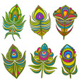decorative ethnic peacock feathers set vector image vector image