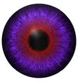 Eye iris texture vector image vector image