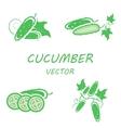 flat cucumber icons set vector image