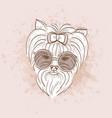 sketch of elegant dog vector image