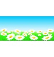 natural background with flowers and sun vector image