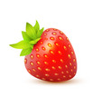 icon of strawberry - juicy realistic vector image vector image