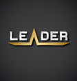 leader silver golden inscription icon EPS10 vector image vector image