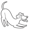 playing happy dog vector image
