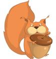 silly squirrel cartoon vector image vector image