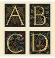 Sixteenth-Century alphabet vector image vector image