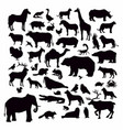 animal silhouettes set isolated on white vector image vector image
