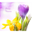 Beautiful spring flowers in polygonal style vector image vector image
