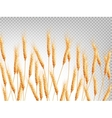 Ears of wheat horizontal pattern EPS 10 vector image vector image