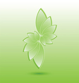 Green nature leaves vector image vector image