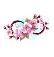 infinity with sakura blossom vector image vector image
