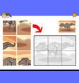 jigsaw puzzles with tyrannosaurus dinosaur vector image