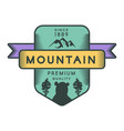 mountain logo template vector image vector image